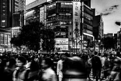 2019_ckimura-14766-Edit