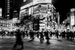 2019_ckimura-980-Edit